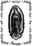 Rose Guadalupe (40 x 60) Throw